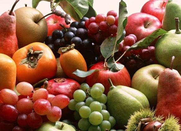 Piante Da Frutto Antiche : Vivaio piante udine progettazione giardini